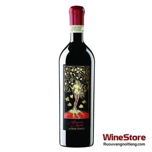 Rượu vang Amarone Mater Domini Veneti - ruouvangnoitieng.com