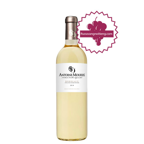 Rượu vang Bordeaux Antoine Moueix Sauvignon Blanc [PE] - ruouvangnoitieng.com